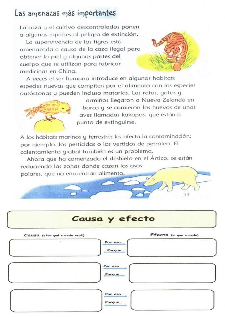 El Caso De Los Textos Informativos En La Escuela