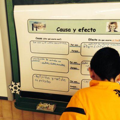Organizador gráfico establecemos relación Causa-Efecto